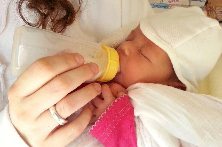 babykostwaermer flaschenwaermer test wie